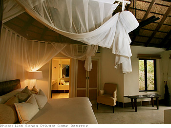 Safari resort room