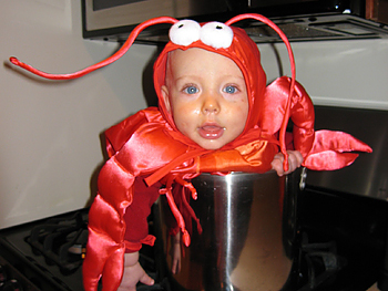 Britt's son dressed as a lobster.