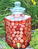 Strawberry Rosemary infusion