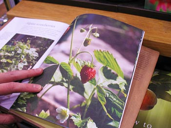 Looking at a book in the Chicago Flower and Garden Show bookstore.
