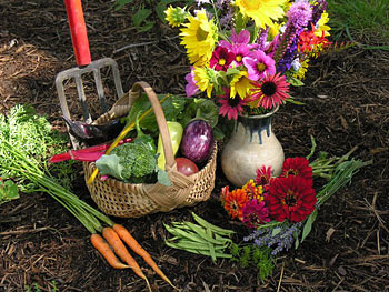 Organically grown vegetables and flowers
