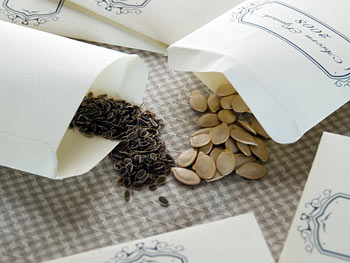 Packets of seeds