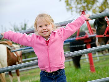 Plan a family trip to a farm or orchard.