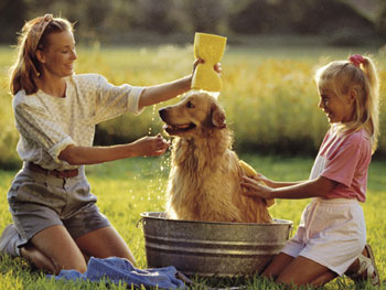 Woman and child bathing their dog