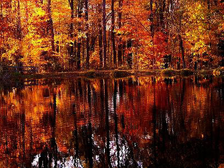 Glenmoore, Pennsylvania