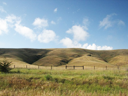 Landscape in San Simeon, California
