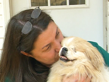 Susan Marino of Angel's Gate, with rescued dogs