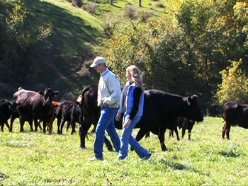 Amy and Bart Mitchell's veal farm