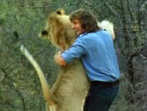 "Christian the Lion and ""father"""