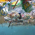 Plastic bags and other waste are polluting the world's oceans.