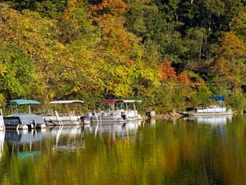 See fall foliage by water.