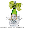 Carolyne Roehm :  carolyne roehm ice bucket hostess gift kitchen