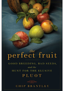 The Perfect Fruit book cover