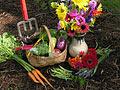 Organic gardening essentials