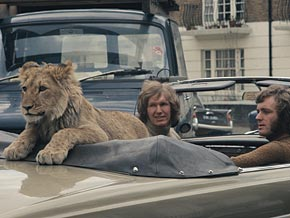 John Rendall and Ace Bourke bought Christian the Lion at Harrod's.