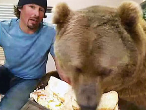 Brutus at the Montana Grizzly Encounter Rescue and Education Sanctuary